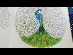 Peacock (Part 3/3)   Secret Garden Adult Coloring Book   Coloring With C...