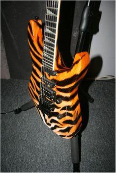 Jackson Tiger