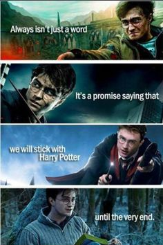 I love Harry Potter. I will be a Potter Head. I will Always stick with harry potter Arte Do Harry Potter, Harry James Potter, Harry Potter Jokes, Harry Potter Universal, Harry Potter Fandom, Harry Potter World, Hunger Games, Hogwarts Brief, Must Be A Weasley