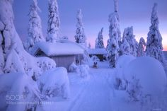 Homeland of winter by bazandr Cool Landscapes, Beautiful Landscapes, Landscape Photos, Landscape Photography, Travel Photography, Winter Beauty, Cabin Fever, Photos Of The Week, How Beautiful