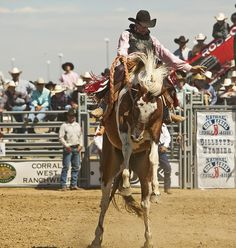 Want to see a rodeo someday