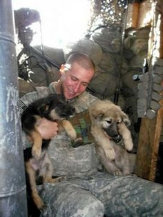 Soldier and puppies