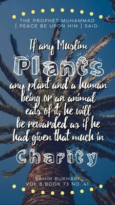 """The Prophet Muhammad (peace be upon him): """"If any Muslim plants any plant and a human being or any animal eats of it, he will be reward as if he had given that much in charity"""" - (Sahih Bukhari vol. 8 book 73 no. 41)  [ Allah God Islam Quran Muhammad (peace be upon him) Jesus (peace be upon him) Hadith Muslim Islamic Quotes ]"""
