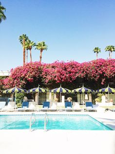 the pool at the parker / sfgirlbybay
