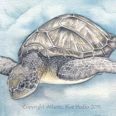 Turtle Art Underwater Ocean Sea Print Scuba by AtlanticBlueStudio