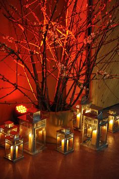 Pillar candles in different sized lanterns flowering tree branches.