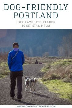 471 Best Pet Friendly Locations Images On Pinterest In 2018 Dog