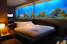 Lovely Aquarium Bedroom The Aquarium, In The Room, Awesome Bedrooms, Glass Houses,  House