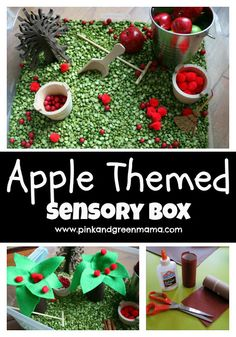 Preschool At Home: Apple Themed Sensory Box.  This mom is an art teacher and has lots of neat sensory bin ideas.