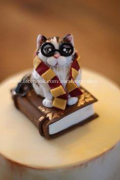 Harry potter cat birthday cake by Zoe's Fancy Cakes