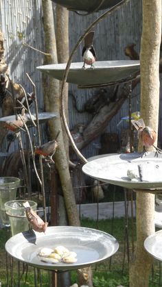 bain d'oiseau, à accrocher sur une branche