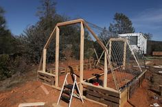 Building a Cattle Panel Pallet Greenhouse | Peak Prosperity.  Possible idea for the dog run...
