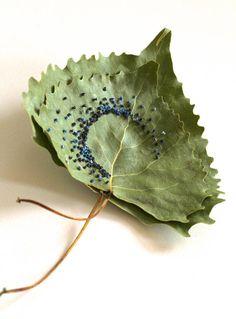 """La artista americana Hillary Fayle combina la naturaleza y el """"toque humano"""" como lo llama ella por medio de hojas y bordado. Habla de la frágil y compleja relación entre el ser humano …"""