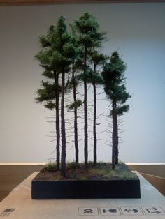 """""""Pines"""" 1/35 scale Diorama base by Terence Young"""