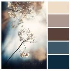 Possible living room colors. lightest is wall color, browns are couch color and blues can be decor and/or pillows Possible living room colors. lightest is wall color, browns are couch color and blues can be decor and/or pillows Room Paint Colors, Paint Colors For Living Room, Wall Colors, House Colors, Colours, Bedroom Colors, Colour Schemes For Living Room, Brown Colors, Living Room Decor Ideas Brown