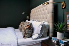 designgratislondon bedroom - Farrow  Ball Studio Green, tufted bed, brass wall lights