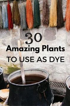 I love this idea to use plants as an all natural dye!