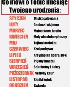 Jam jest słodki kotek, a wy ? Funny Sms, Wtf Funny, Polish Memes, Happy Photos, Everything And Nothing, True Memes, Life Humor, Stupid Memes, I School