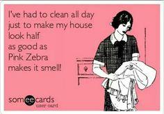 Pink Zebra Quote