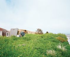 For his family's recently remodeled home in San Francisco, designer Peter Liang undertook a two-part landscaping renovation: He planted a living roof, then, with the help of landscape architect Andrea Cochran, redid the backyard.