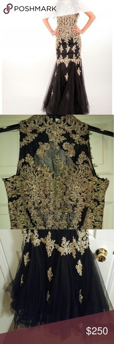 SEXY & ELEGANT black/gold embroidered trumpet gown SEXY & ELEGANT black/gold embroidered trumpet gown.  Only worn once!  Fits curves nicely; size is L.  Great for engagements, weddings, homecoming, prom, or any occasion where you want to be a SHOWSTOPPER! Dresses Prom