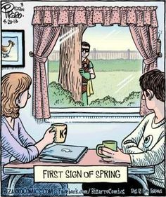 Ha! Ha! First Sign of Spring: Yep ... It's a ROBIN ... FROM: Is Nothing Sacred?: The First Sign of Spring