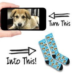 Custom socks for everyone! Print any puppy, kitty, or human face on cozy socks. Get custom socks with your pet printed on them today. Creative Gifts, Cool Gifts, Diy Gifts, Cat Stroller, Animals And Pets, Cute Animals, Cozy Socks, Custom Socks, My Guy