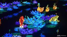 Gardens by the Bay lights up Mid-Autumn festival with sprawling lantern sets - Channel NewsAsia