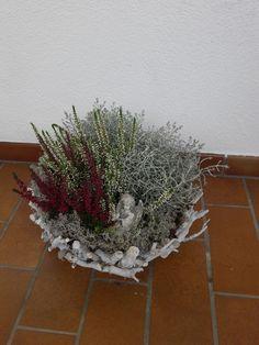 Plants, Basteln, Plant, Planting, Planets