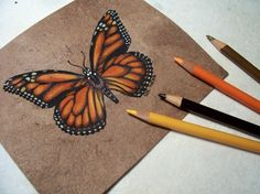 Art for butterfly workshop...Val Webb's Studio