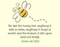 Be like the honey bee ~ Imām Alī ( ع )