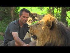 Kevin Richardson - lion whisperer