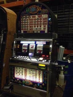 In den hoyle casino zu installieren