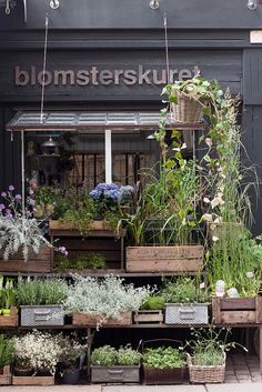 Old wood crate garden containers in front of shop Blomsterskuret