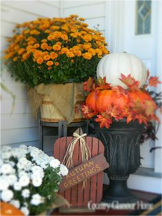 Fall Porch Entrance...with colorful mums and pumpkins.  Country Glamour Home: The Front Porch.  There are other lovely ideas on this blog.