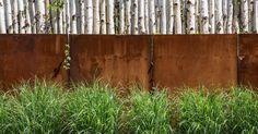 Birch, weathering steel, grasses - Mahan Rykiel