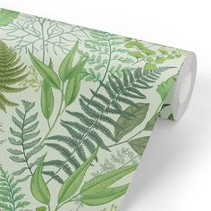 Removable Water-Activated Wallpaper Ginkgo Leaves Tree Foliage Botanical Green