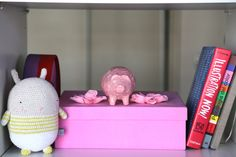 Chancho rosa de la suerte /  The good luck pig