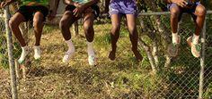 Amazing initiative providing walking tours of children's communities (Bagot Community, NT)