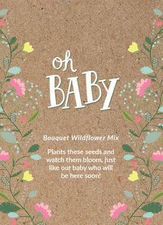 "Baby Shower ""Oh Baby"" Seed Favor – Bentley Seeds"