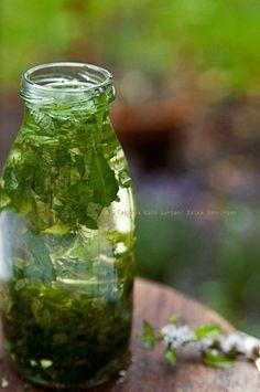Pfefferminzöl selber machen In meinem Garten habe ich unterschiedliche Sorten Pfefferminze gepflanzt. Aus dieser lässt sich nicht nur super leckere frischer Tee zubereiten, sondern auch Pfefferminzöl. Pfefferminzöl ist ein Heilöl. Es hilft bei Kopfschmerzen, indem man es auf die Schläfen aufträgt. Pfefferminzöl wirkt bei Muskelkrämpfen und Verstauchungen. Es ist gut für den Magendarm und Minzöl … … Weiterlesen →