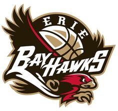 Erie BayHawks Primary Logo (2008) - A black and red hawk below a basketball with team script in white