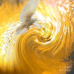 Prophetic Art Featured Images - Holy Spirit Come by Beverly Guilliams. Golden dove in swirls of golden glory. Catholic Art, Religious Art, Holy Spirit Come, Holy Spirit Images, Jesus Art, God Jesus, Jesus Bible, Saint Esprit, Prophetic Art