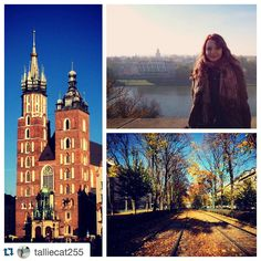 #Repost @talliecat255 Never would have guessed that Poland would be this beautiful #kraków #poland #oldtown #cracow #autumn #leaves #bundledup #studyabroad #ispyapi #fallbreak2015