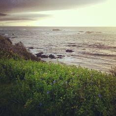 #ridecolorfully along the Mendocino coast