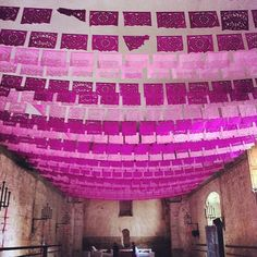 Pink papel picado. You know when you are in Mexico.