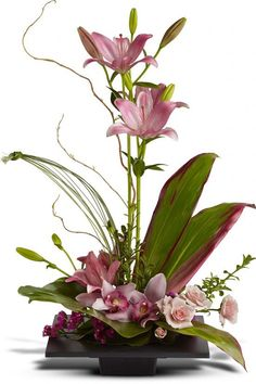 Order Imagination Blooms with Cymbidium Orchids NYC Flower Delivery-delivered from Starbright Floral Design, your local New York florist. Send Imagination Blooms with Cymbidium Orchids for fresh and same day flower delivery throughout New York, NY area. Orchid Flower Arrangements, Contemporary Flower Arrangements, Church Flower Arrangements, Church Flowers, Beautiful Flower Arrangements, Floral Centerpieces, Beautiful Flowers, Tropical Flowers, Exotic Flowers