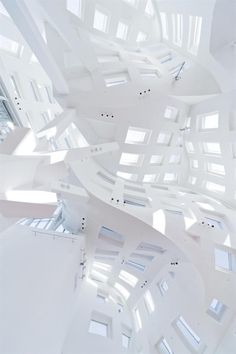 The Cleveland Lou Ruvo Center for Brain Health: Event Space Ceiling