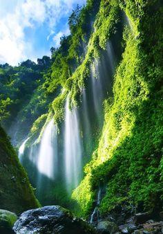 maaza hatkey Madakaripura Waterfall located in Sapih village, Lombang district, East Java, Indonesia