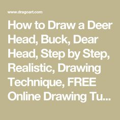 How to Draw a Deer Head, Buck, Dear Head, Step by Step, Realistic, Drawing Technique, FREE Online Drawing Tutorial, Added by finalprodigy, August 10, 2011, 7:42:33 pm